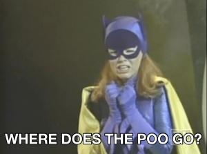 batgirl-wherepoo