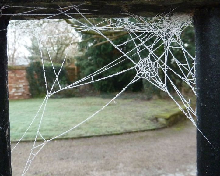 The gate to our courtyard, decorated by ice spiders